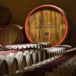 Il vino dei Monteci